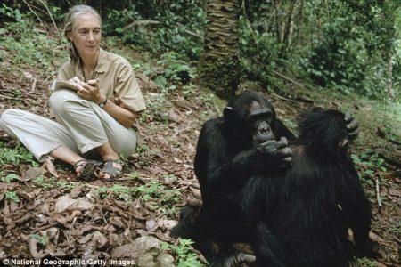 Jane Goodall speaking tour of Australia
