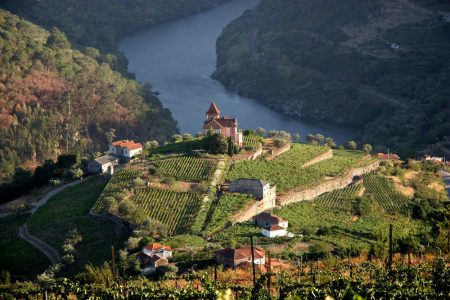 Ports of Call – a day in Portugal's Douro Valley